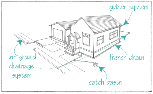 Comprehensive Drainage Diagram