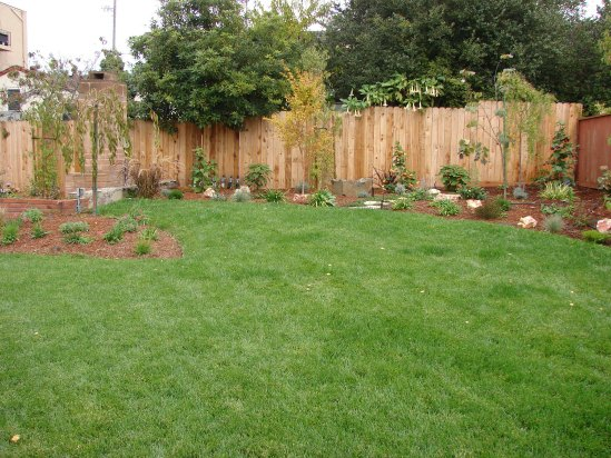 After- New Lawn