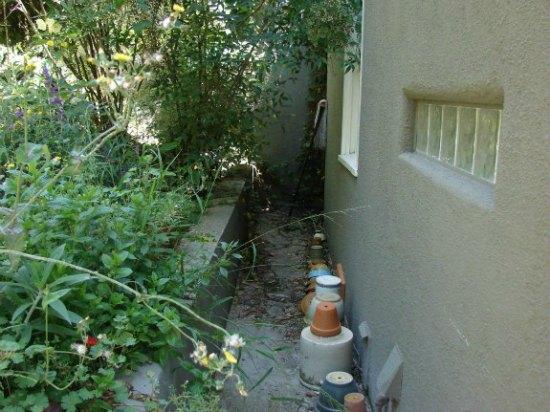 Failing Retaining Wall in Overgrown Backyard