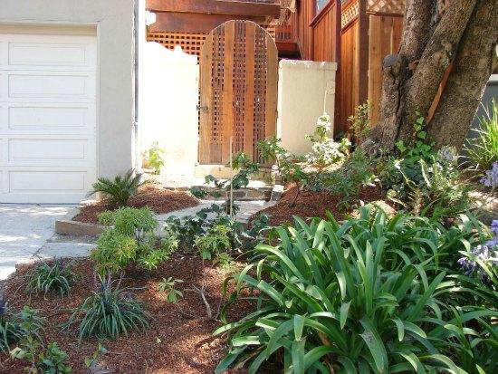 Lush Planting in Side Yard Garden