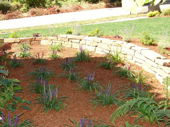 Liriope with Dry Stacked Ledge Stone Wall
