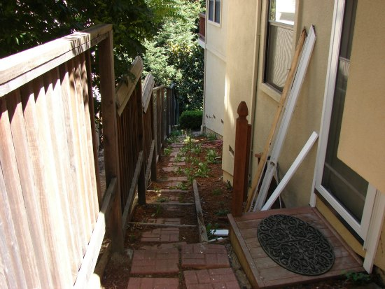 Neglected Side Yard