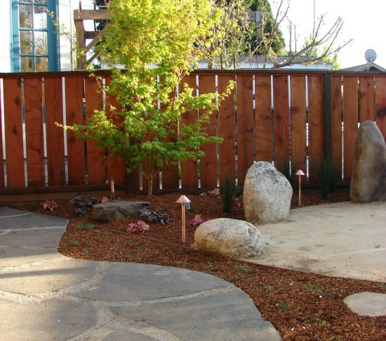 Stone Patio and Sango Kaku Japanese Maple