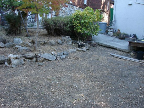 Undeveloped Backyard Space
