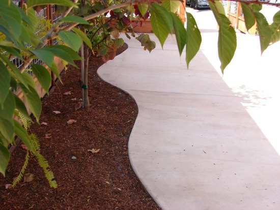 Curved Concrete Patio