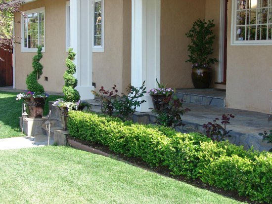 Formal Entry Planting
