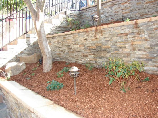 Terraced Planting Bed with Accent Tree
